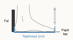 talphossz.png?v=null.1482238000